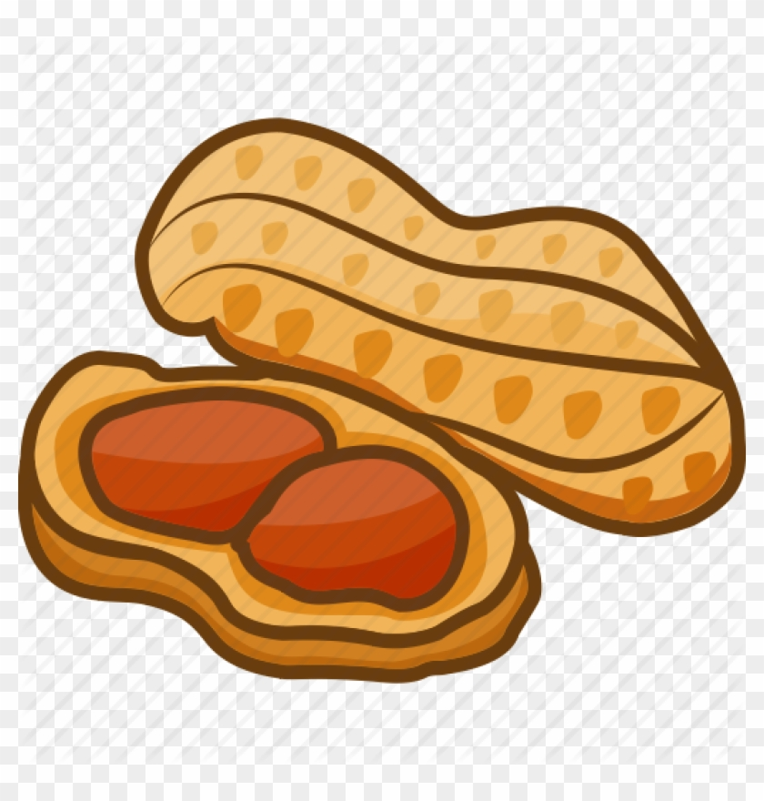 Peanut clipart legume icon free transparent png.