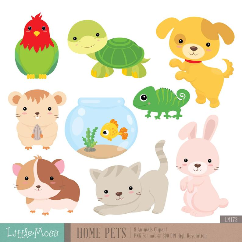 Home Pets Digital Clipart, Dog Clipart, Cat Clipart, Guinea Pig, Hamster.