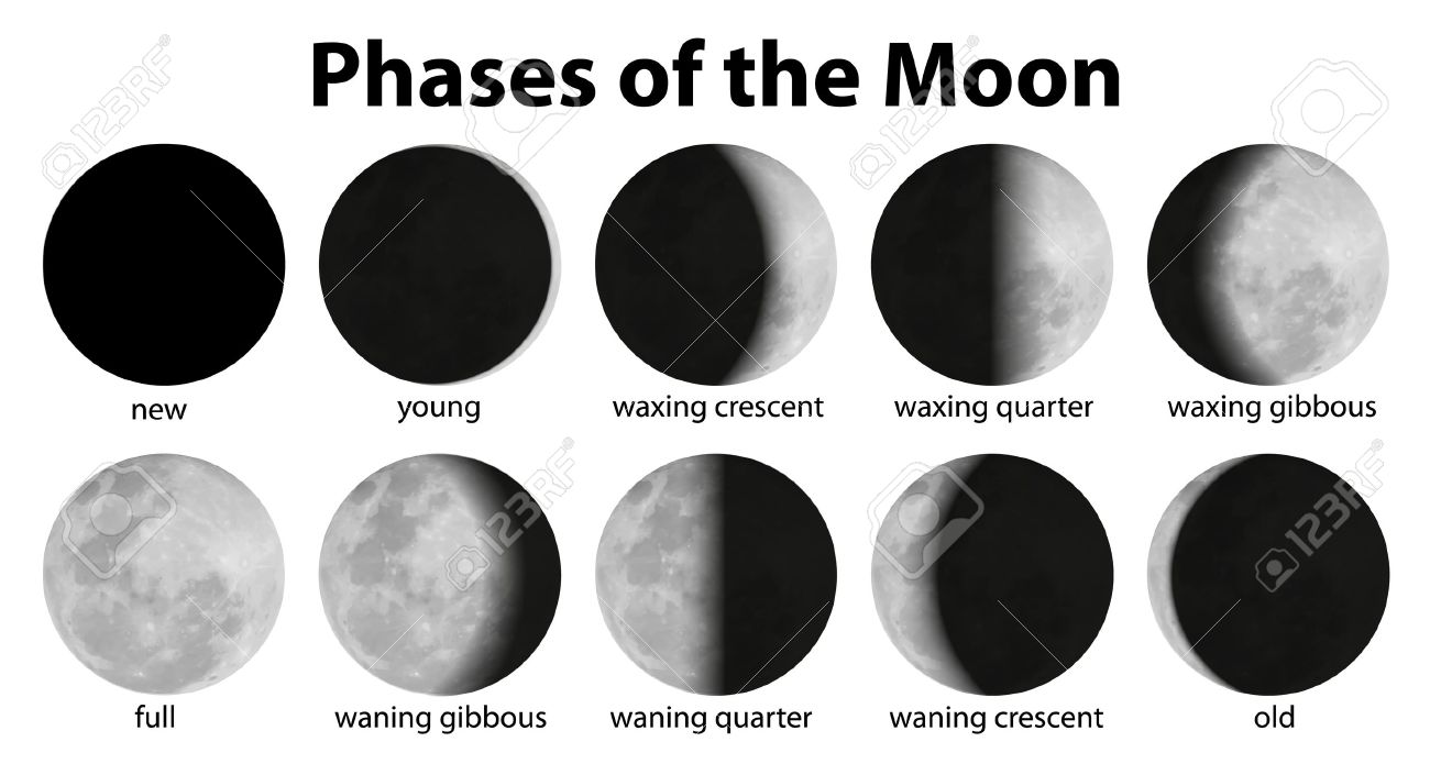 Phases of the moon clipart 3 » Clipart Station.