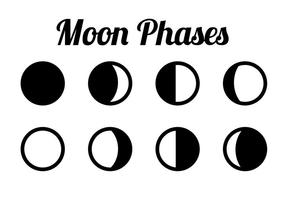 Moon Phase Free Vector Art.