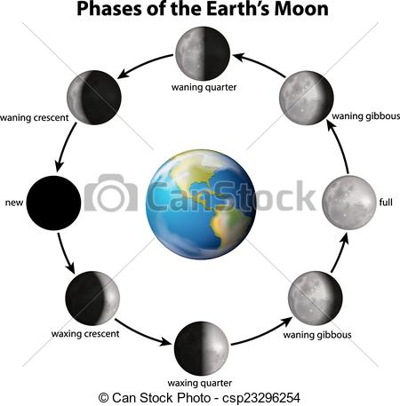 Phases of the Earth's Moon.