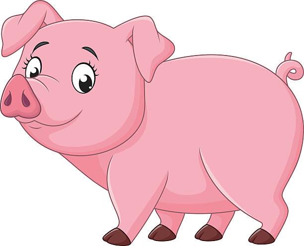 Best Pig Ear Food Illustrations, Royalty.