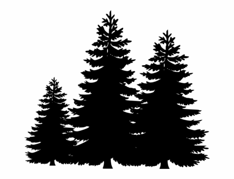Permalink To Pine Tree Clip Art Winter Clipart.