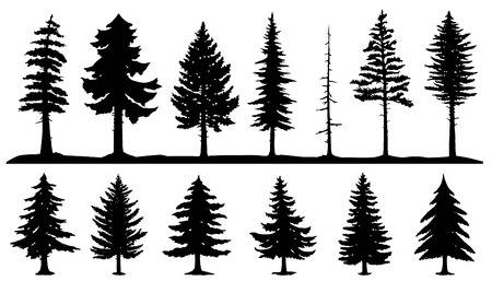 116,171 Pine Tree Cliparts, Stock Vector And Royalty Free Pine Tree.