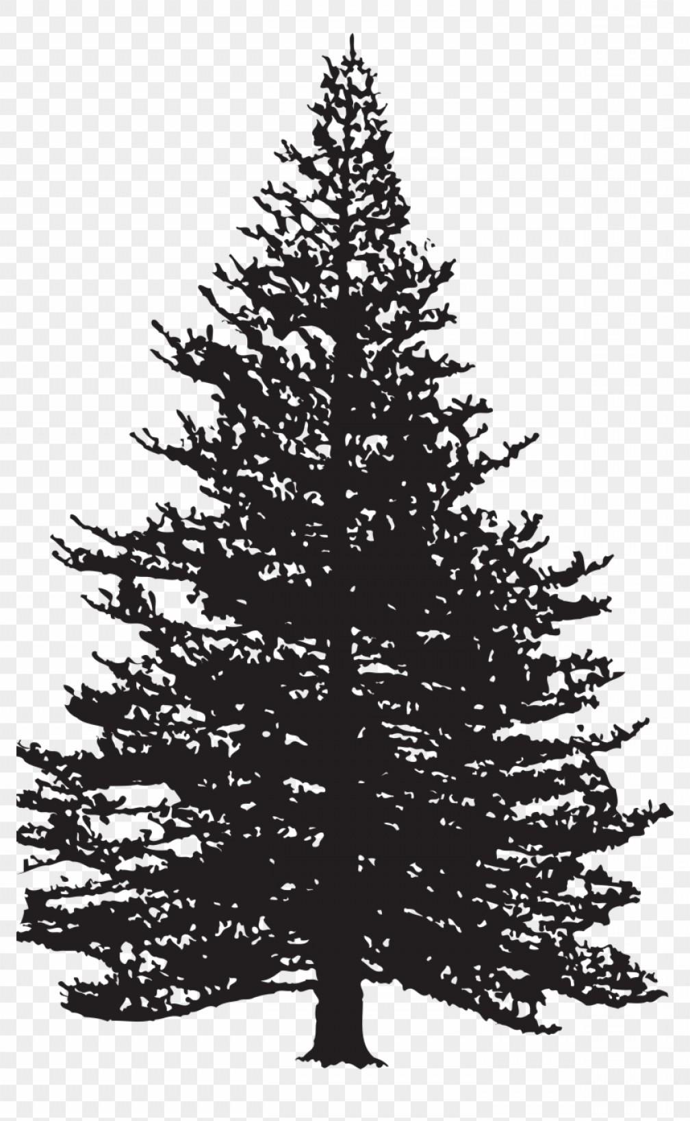 Ttojopine Tree Silhouette Clip Art Image Pine Tree.