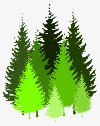 Pine Tree Clip Art PNG, Transparent Pine Tree Clip Art PNG Image.