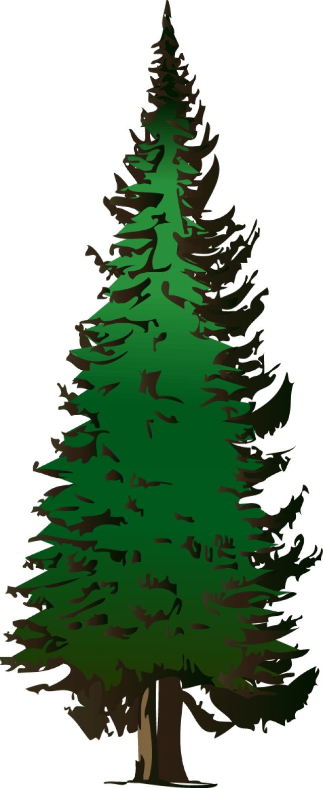 Free clipart of pine trees 5 » Clipart Portal.