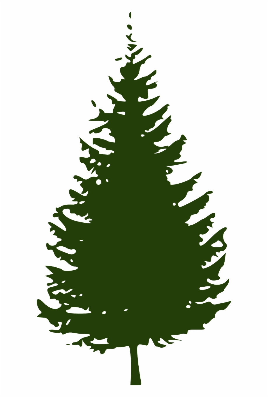 Pine Clipart Coniferous Tree.