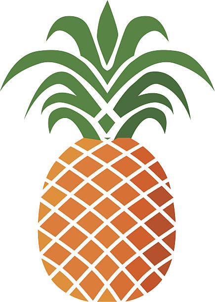 Best Pineapple Illustrations, Royalty.