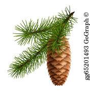 Pine Cone Clip Art.