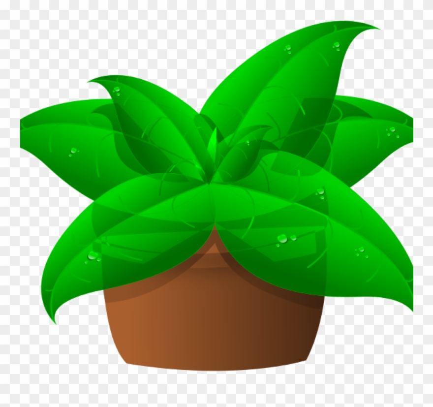 Clip Art Plant Green Plant Clipart Space Clipart.