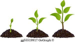 Plant Clip Art.