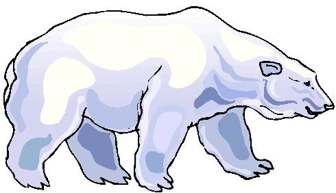 Polar bears clip art.