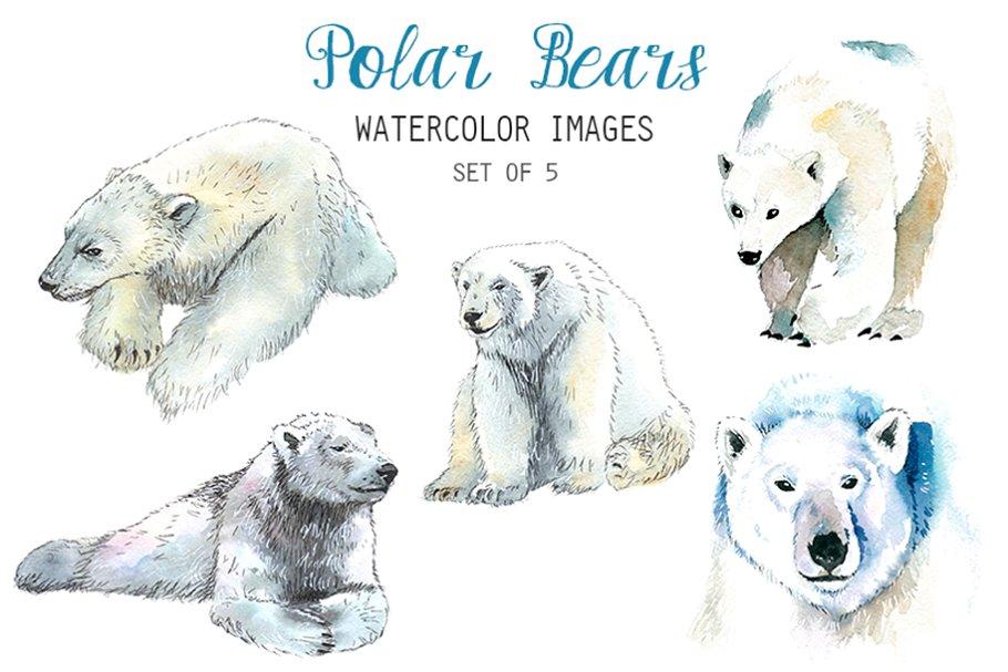 Watercolor Polar Bear Clipart.