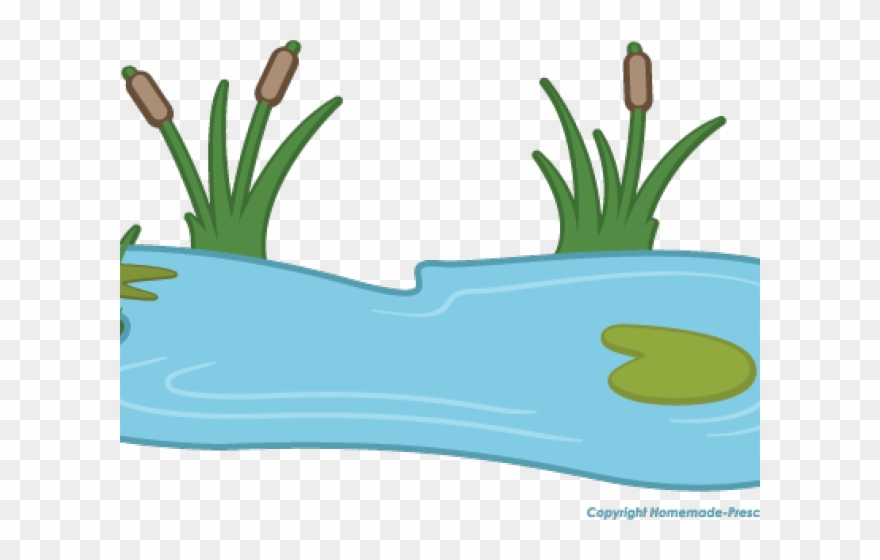 Lily Pad Clipart Pond Animal.