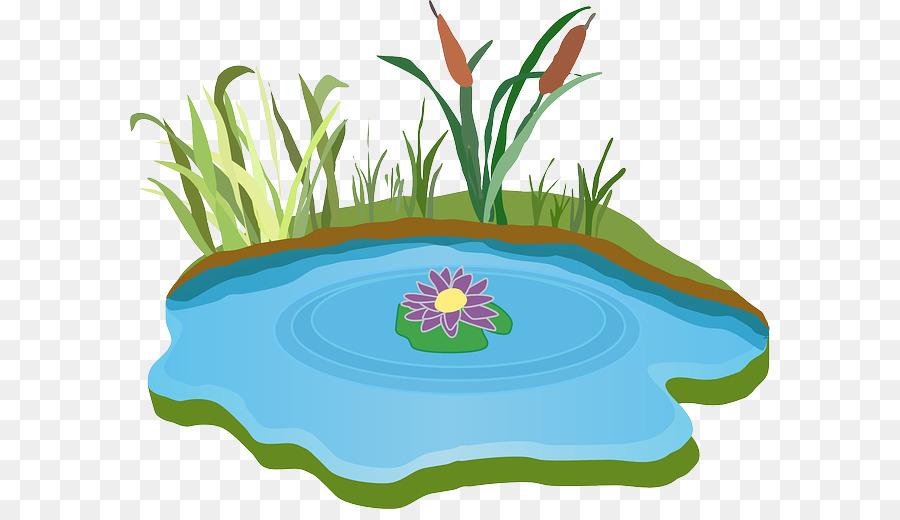 Pond Cartoontransparent png image & clipart free download.