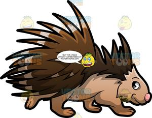 An Endearing Porcupine.