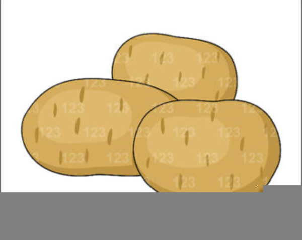 Sweet Potatoes Clipart.