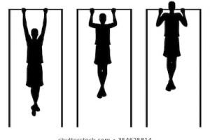 Man Exercises Performs Pull Ups In Gym Clipart » Clipart Portal.