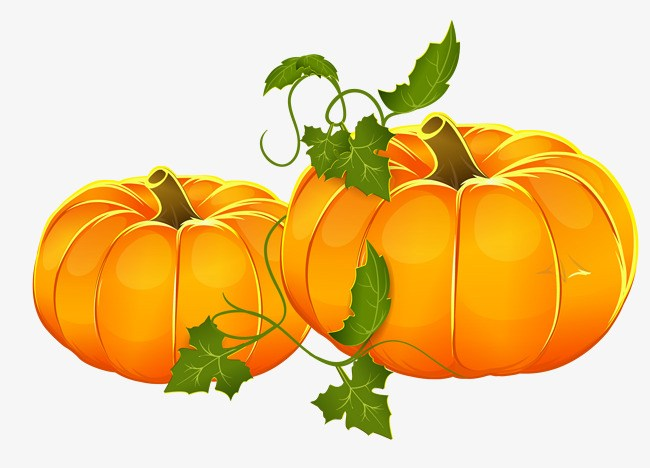 Pumpkin vine clipart 5 » Clipart Portal.
