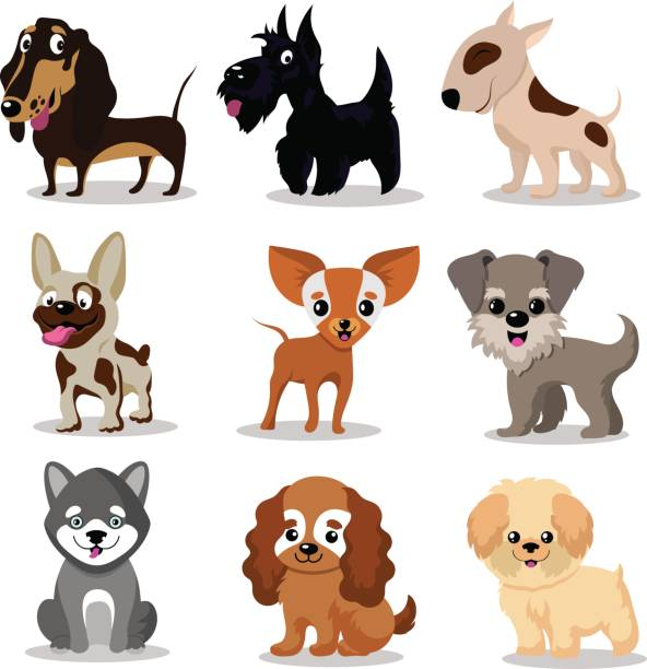 Best Puppies Illustrations, Royalty.