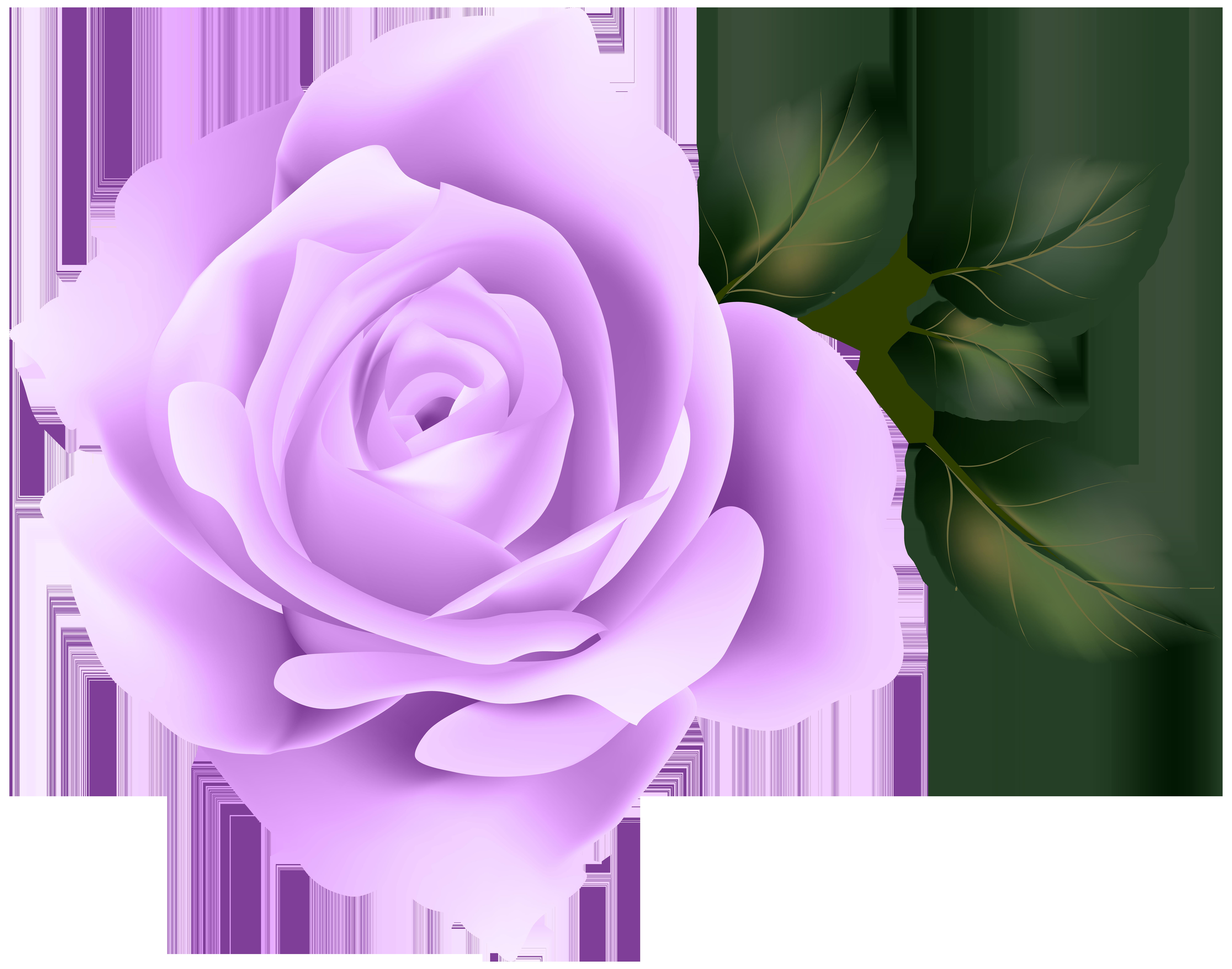 Purple Rose Clip Art Image.