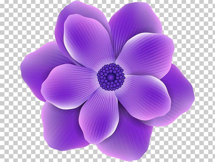 Flower Purple Rose PNG, Clipart, Clip Art, Color, Cut Flowers.