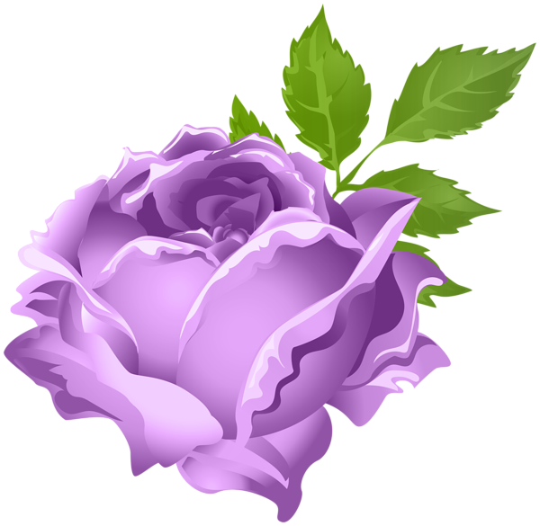 Rose Clipart Lavendar.