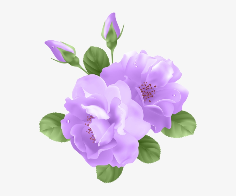 Png Free Library Image Purple Rose Png Animal.