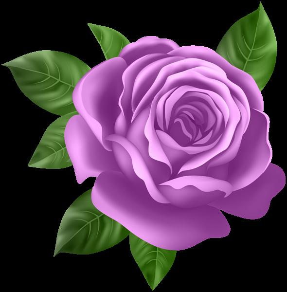 Pin by karen thompson on Purple.