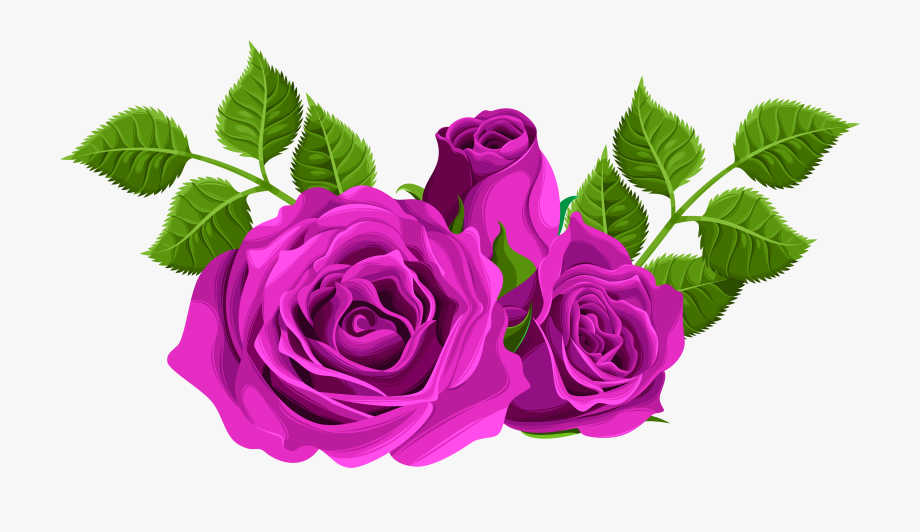 Clip Black And White Download Purple Roses Clipart.
