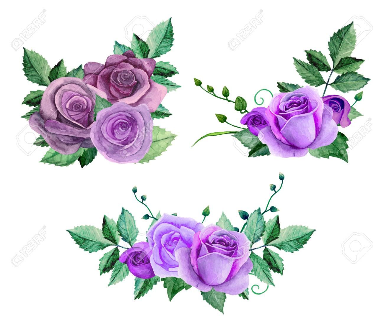 Watercolor purple roses bouquets. Flowers clip art. Floral hand...