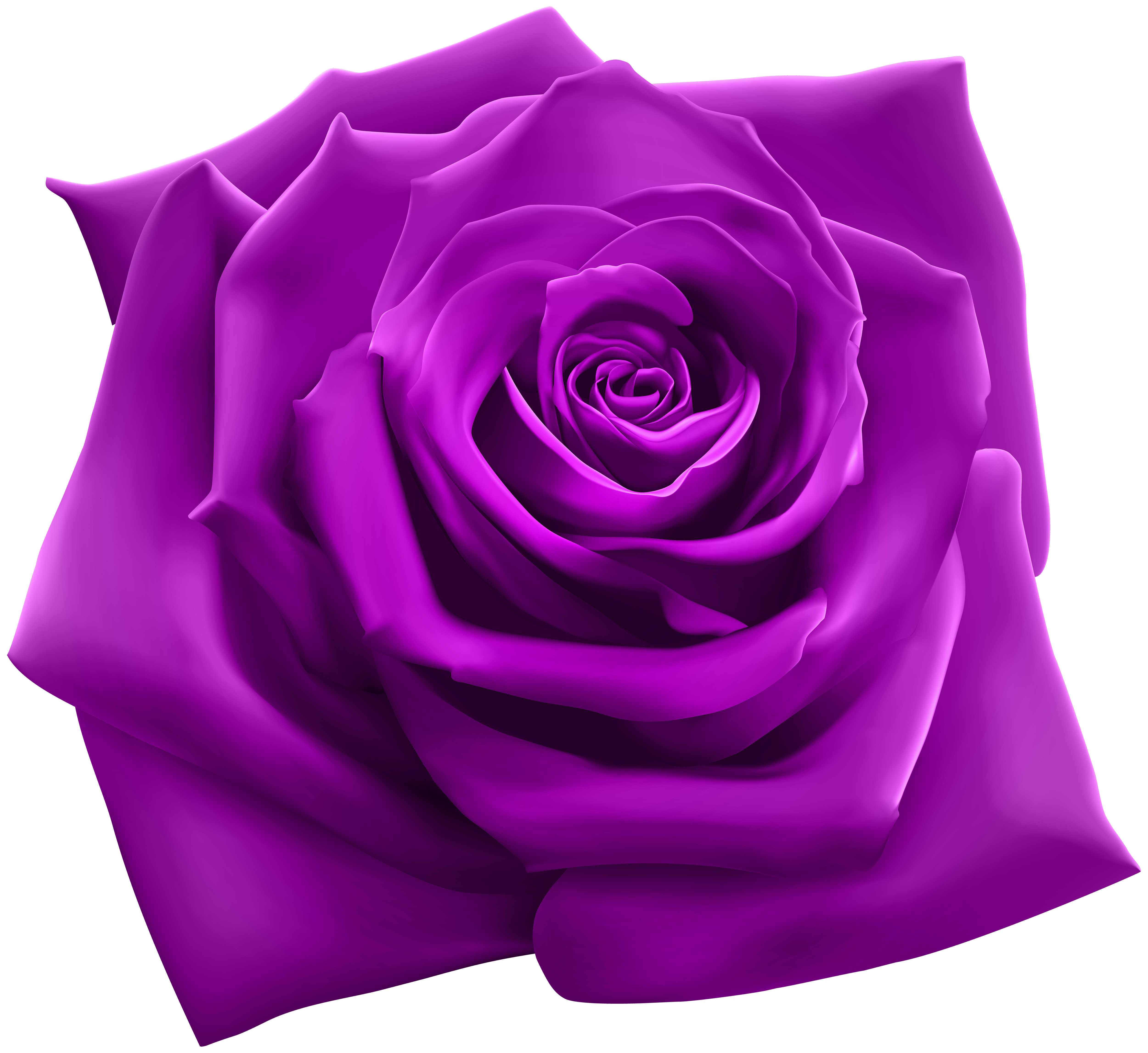 Purple Rose PNG Clipart Image.