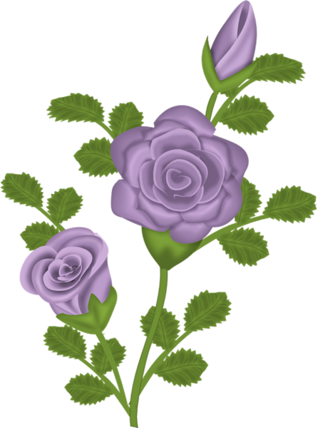 purple rose clip art.