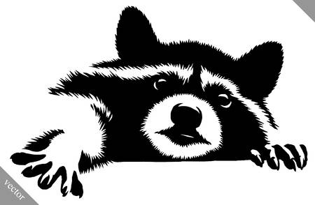 2,397 Racoon Stock Vector Illustration And Royalty Free Racoon Clipart.