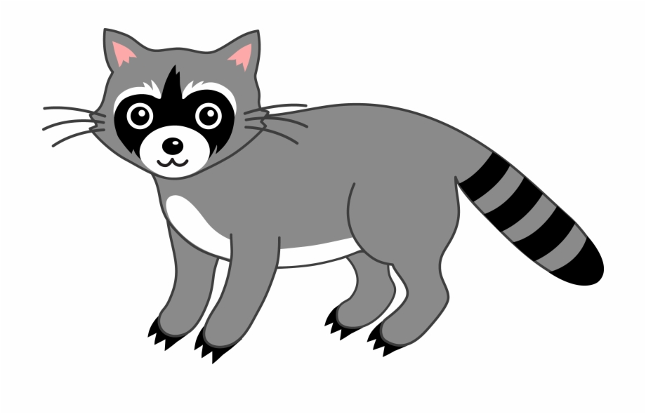 Free Raccoon Clipart.
