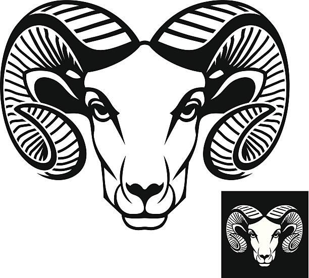Best Ram Illustrations, Royalty.