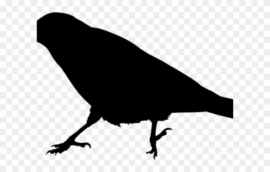 Raven Clipart Raven Bird.