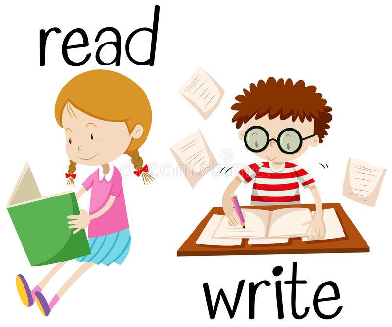 Girl Reading Writing Stock Illustrations.