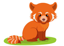 Search Results for red panda.
