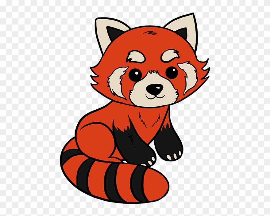 Red Panda Drawing.
