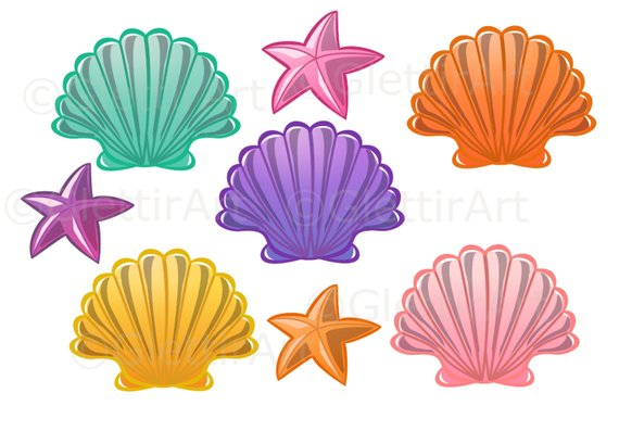 Seashell clipart, Sea Shell clipart for personal and commercial use.