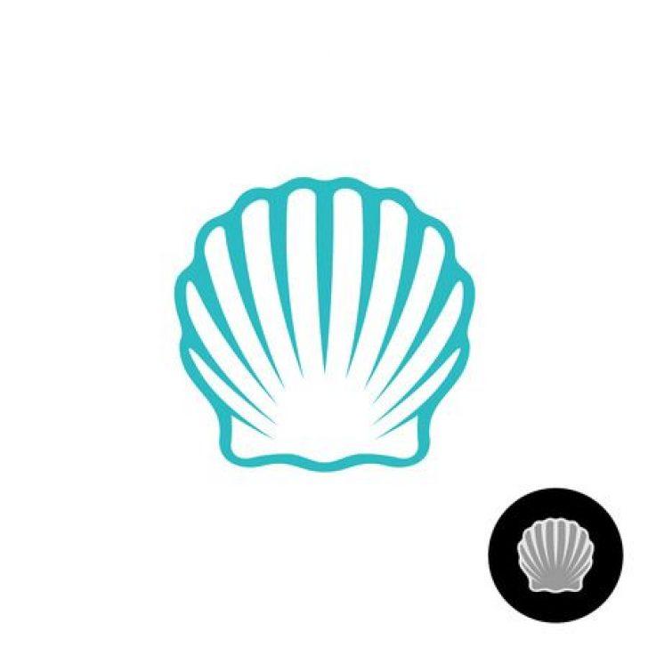 clipart seashell free.