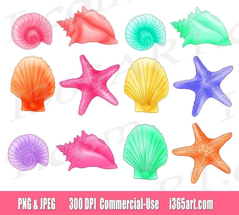 50% OFF Seashell clipart, seashell clip art, sea shells, pastel, nautical,  planner stickers, digital shells, scrapbooking, commercial.