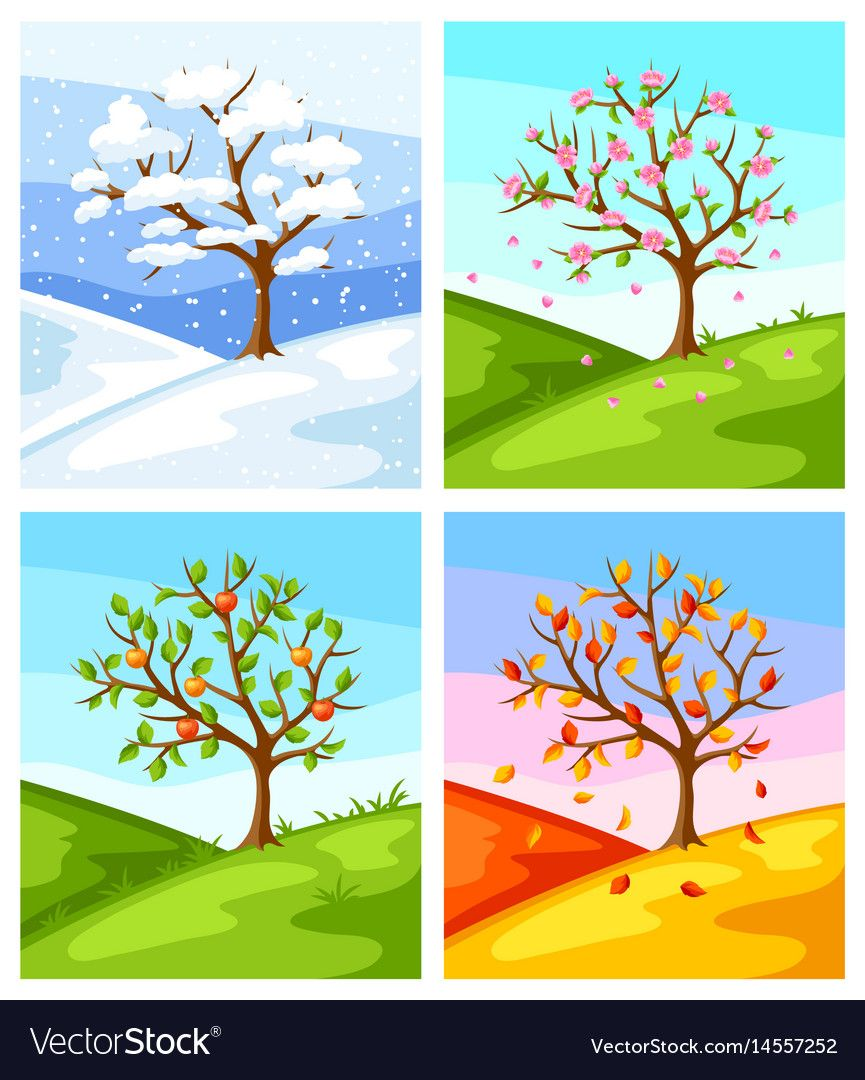 Four seasons of tree and landscape Royalty Free Vector Image.