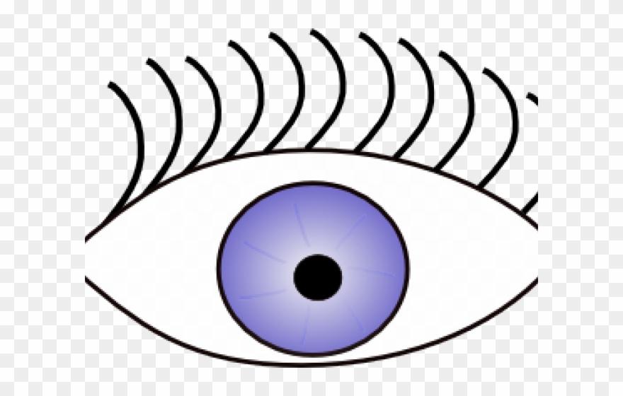 Eyeball Clipart See Sense.