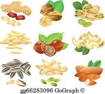 Seeds Clip Art.