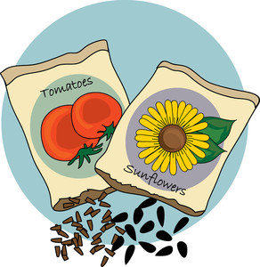 Free Seeds Clipart Image 0515.