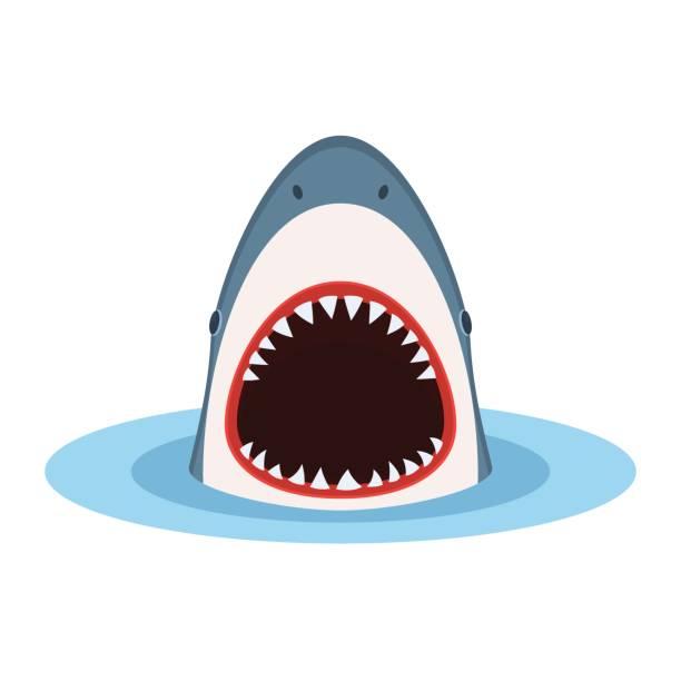 Best Shark Illustrations, Royalty.
