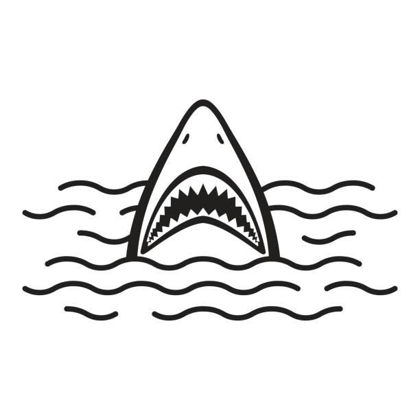 Best Shark Fin Illustrations, Royalty.